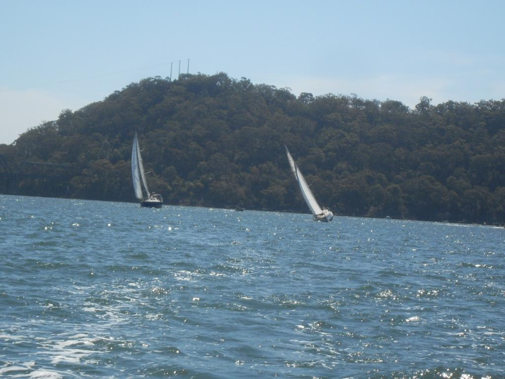 Our Top hats leaving bigger boats in their wakes.jpg
